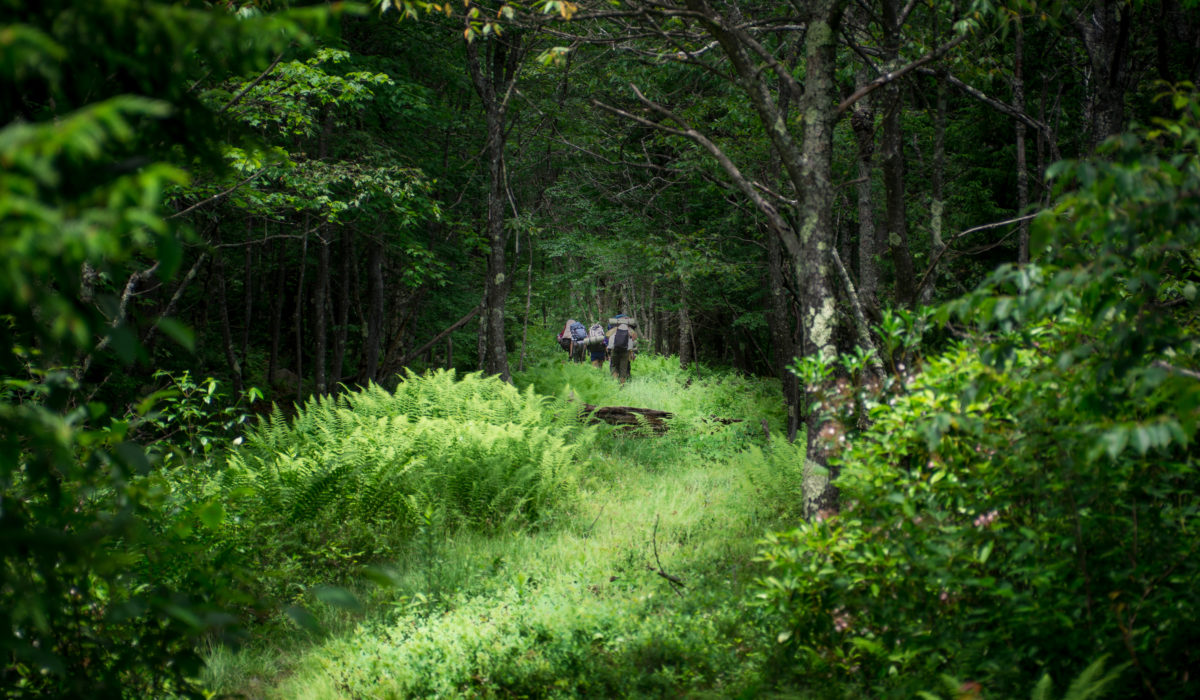 Dolly Sods Wilderness, West Virginia, Backpacking (© Baltimore Chesapeake Bay Outward Bound School)